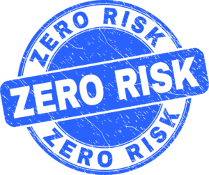Zero Risk Pay Monthly Web Design